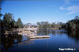 Docks at Steinhatchee Landing